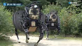 사람 대신 전투하는 '킬러 로봇' 어디까지 왔나? / YTN 사이언스
