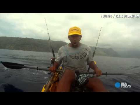 Shark Gives Fisherman The Surprise Of His Life