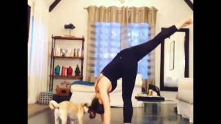 Danielle Yoga, Coldplay & Toby The Pug