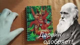 Обзор БЛОКНОТА 3D