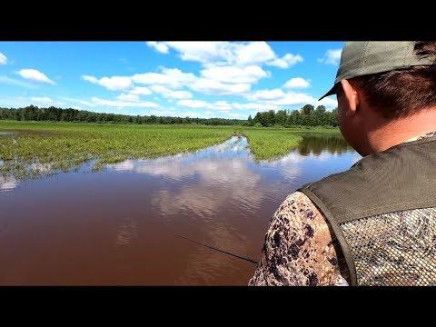 ЛОВЛЯ НА НЕОГРУЖЕННУЮ РЕЗИНУ!!!Рыбалка в траве. Спиннинг 2019. Ловля щуки.