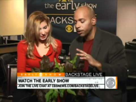 Why is the Weatherman Eating this Valentine's Day Plant?