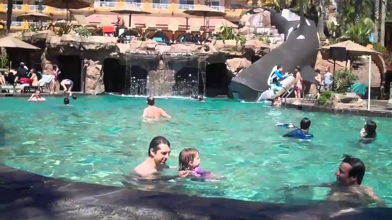 emma the swimmer at villa del palmar in cabo san lucas - youtube