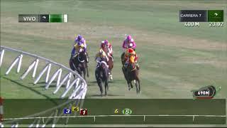 Vidéo de la course PMU PREMIO FUERZA AEREA DE CHILE
