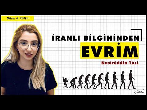 İslam Bilgininden İlksel Evrim Sistemi: Nasîrüddin Tûsî