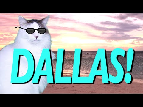HAPPY BIRTHDAY DALLAS! - EPIC CAT Happy Birthday Song