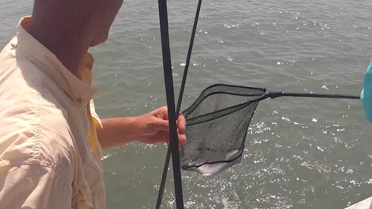 Gopro south jetty fishing galveston texas with emmrod for Galveston jetty fishing report