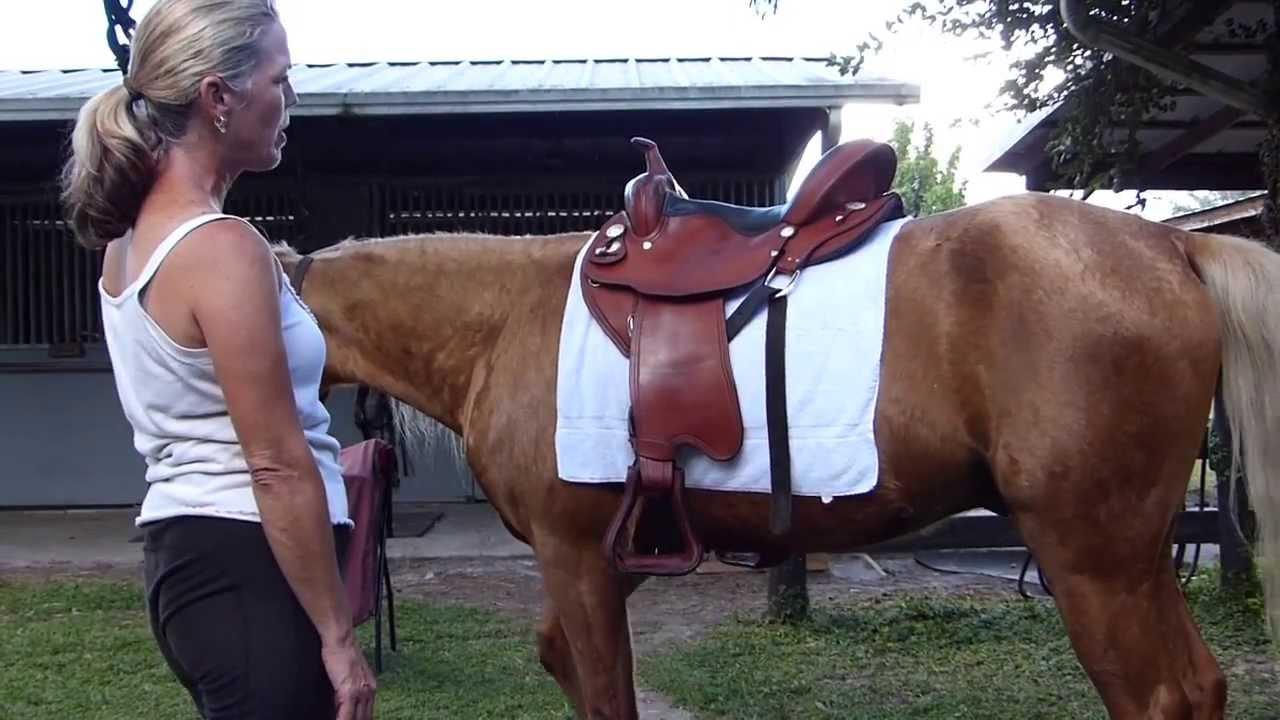 Western Saddle Fitting, The Traveling Saddle™
