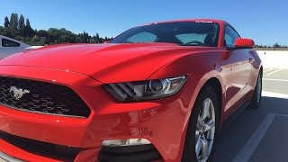 homepage tile video photo for 2016 Mustang Back Road Driving