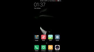 Nubia Z11 Max (Miui 8 Rom) (you can download it from the link below)