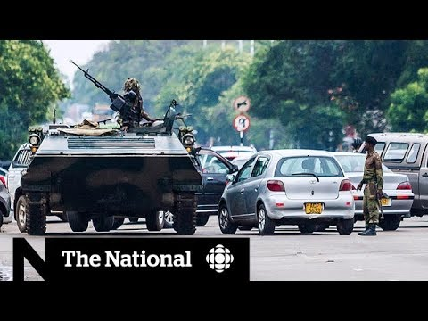 Zimbabwe coup: What's next following military takeover?