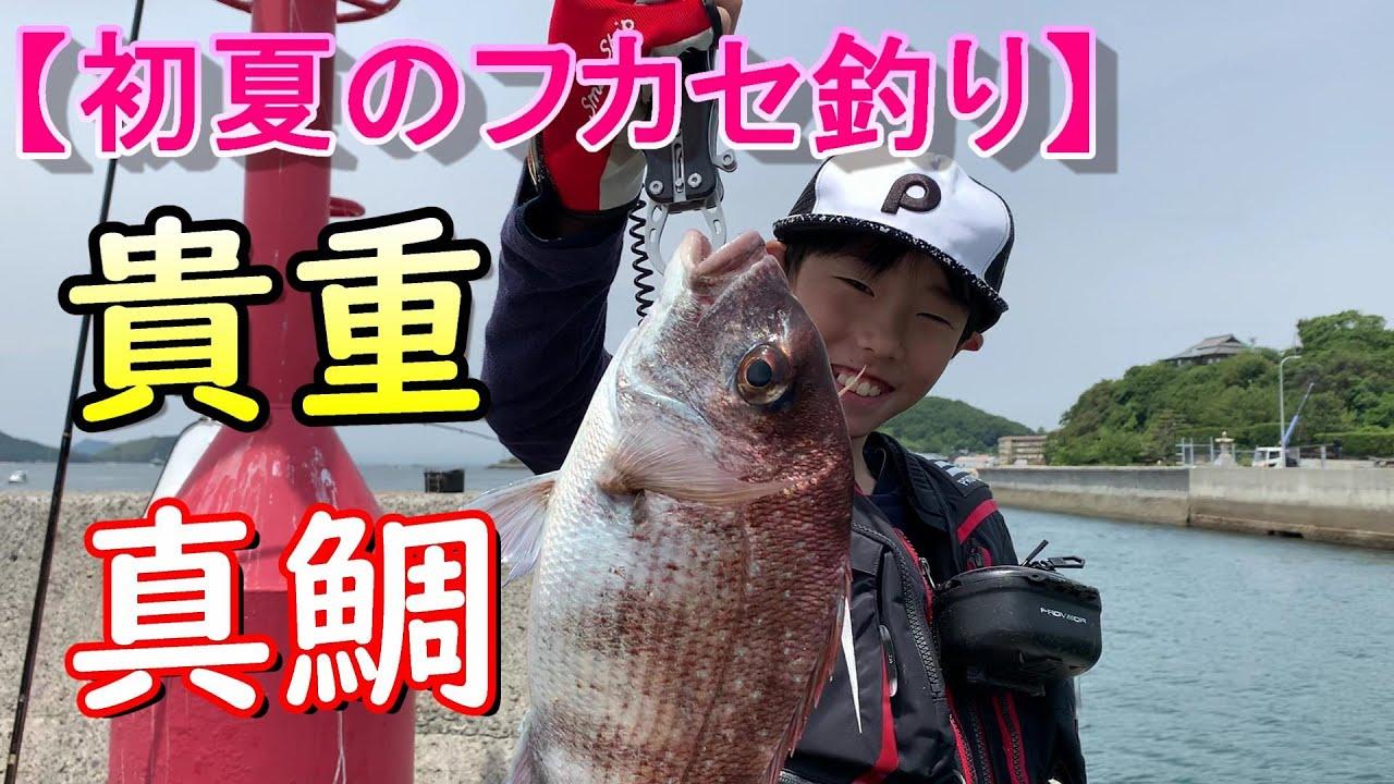 貴重な1匹を狙う!チヌ&マダイのフカセ釣りin岡山県下津井沖