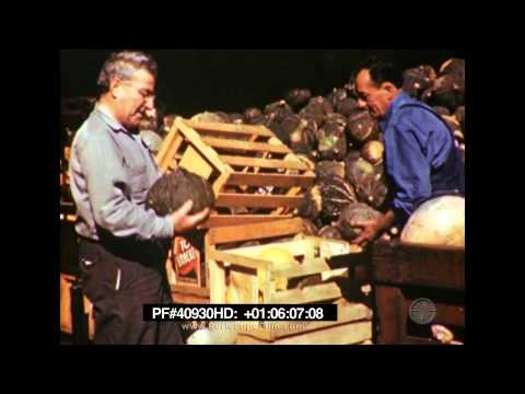 To Market, to Market - Agricultural Goods, San Francisco 40930 HD