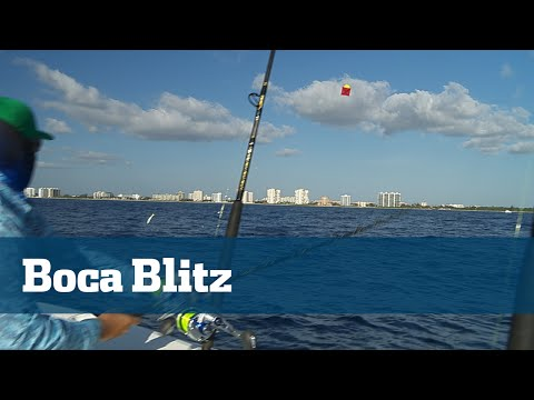 Florida Sport Fishing TV - Kite Fishing Boca Sailfish Tuna Dolphin - Season 06 Episode 01