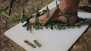 Yucca Caterpillar Sandals