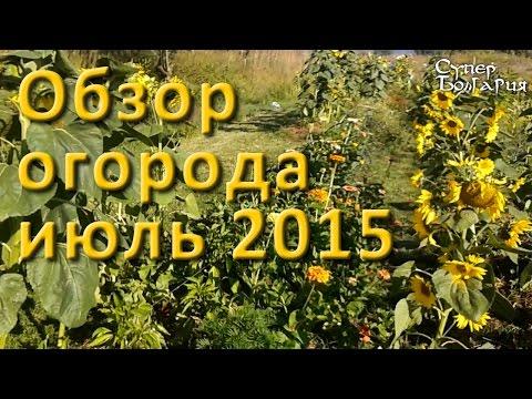 видео: Огород своими руками. Обзор от 18 июля 2015 г. Природное земледелие