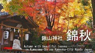 錦秋 鍬山神社 京都府亀岡市 2017 Kinshu in Kuwaym-Shrine Kameoka-City Kyoto Japan