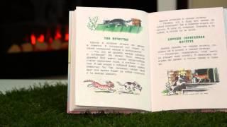"""Г. Остер читать """"Так нечестно"""" детская книга """"котенок по имени ГАВ"""""""