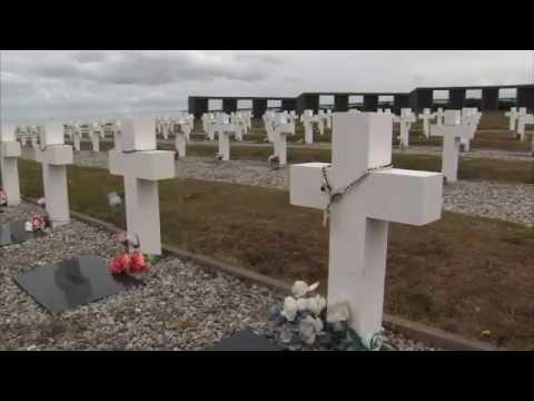 Falkland Islanders To Vote In Referendum