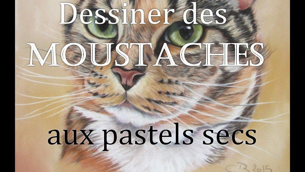 Tutoriel dessiner les moustaches des animaux pastels - Dessiner des animaux ...