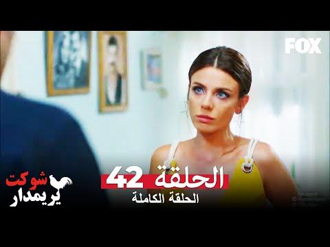 شوكت يريمدار الحلقة 42 كاملة  Şevkat Yerimdar