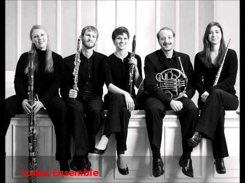 Piazzola Libertango for Wind Quintet, Lodos Ensemble
