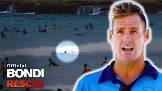 Swimmer Disappears Under Waves - Is Clint Fast Enough?