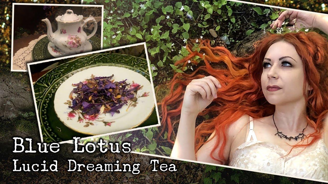 Blue Lotus Tea – The Dreamy Tea