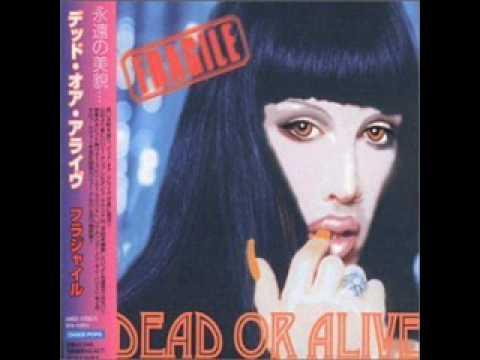 Dead Or Alive - I Promised Myself
