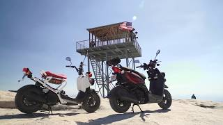 2017 Honda Ruckus vs. 2017 Yamaha Zuma 50 - Adventure Scooters in the Sierra! | ON TWO WHEELS