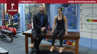 Ankle Foot Exam Dr  Vizniak Brief