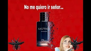 Sauvage Dior Review