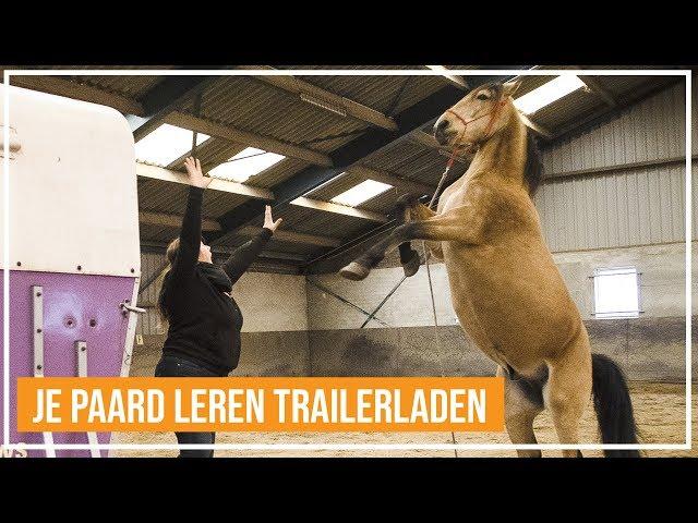 Trailerladen   Hoe leer je jou paard de trailer op lopen?