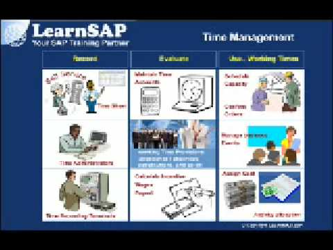 Introduction To SAP Human Capital Management | Modules And Sub-modules | SAP HR Overview ( Part 2 )