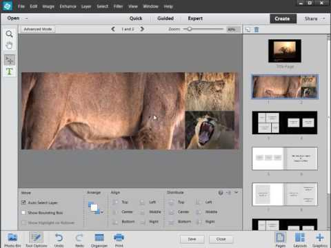 Photoshop Elements: Bookmaking