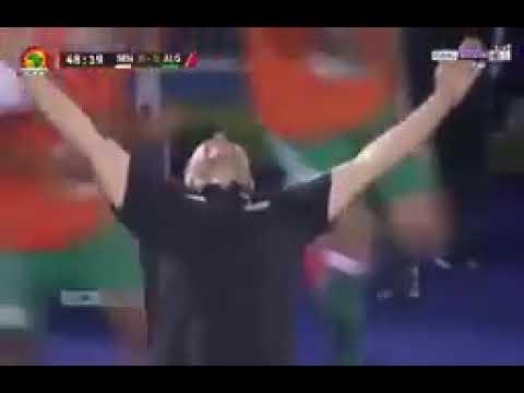 هدف بلايلي اليوم في مبارات كأس إفريقيا للامم الجزائر ضد السينغال 0/1.