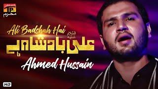 Ali Badshah Hai   Ahmed Hussain   Nohay   Moharram 2020/1442   TP Muharram