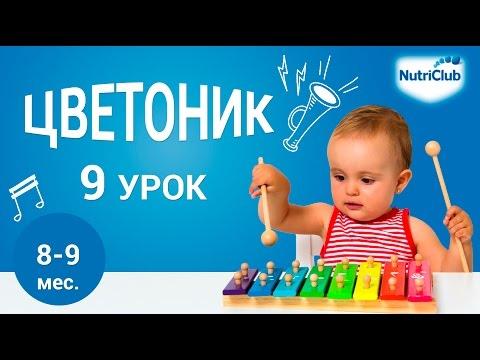 Учимся ходить. Развитие ребенка 8-9 месяцев по методике Цветоник. Урок 9