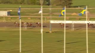 Vidéo de la course PMU PRIX JONNY JOHANSSONS MALERIS MONTÉLOPP