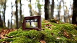 Новый фотофильм Дубовый лес для ваших фото