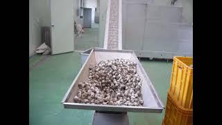 화목제 푸드머신 마늘 껍질 대용량 탈피기3 (garli…
