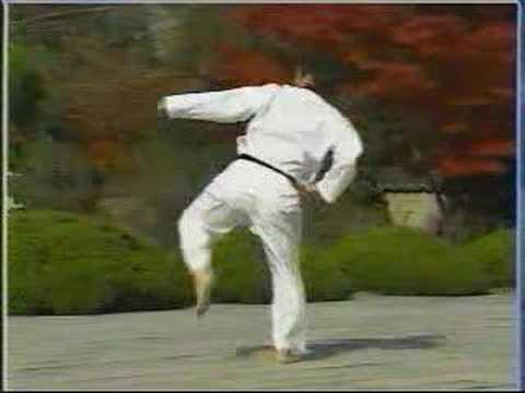 taekwondo poomse 11