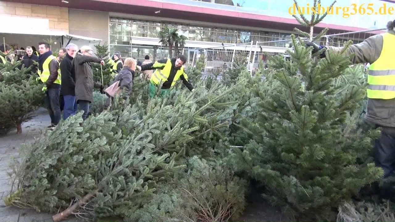 Weihnachtsbaum verkauf des lions clubs duisburg - Obi weihnachtsbaumverkauf ...