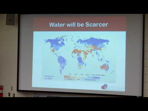 Global Water Supplies - Chemistry and Sustainability