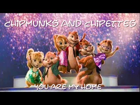 Chipmunks and chipettes - You are my home