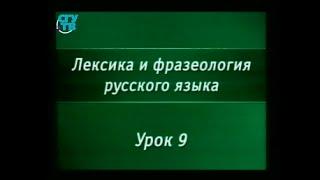 Русский язык. Урок 9. Устойчивые выражения в русском языке. Часть 2