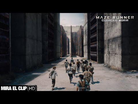 MAZE RUNNER: CORRER O MORIR - Clip