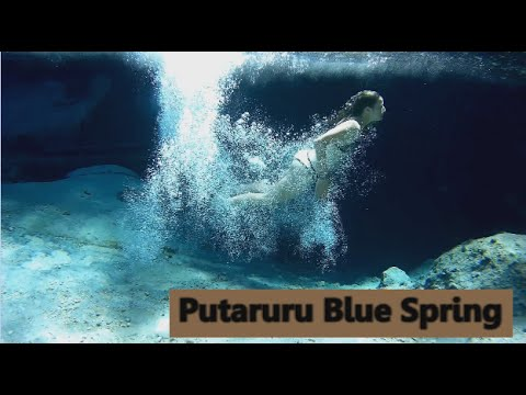 Diving in a Crystal CLEAR BLUE SPRING