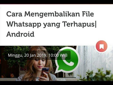 cara-mengembalikan-file-whatsapp-yang-terhapus-di-android
