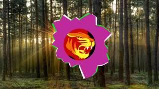 Ellusive amp; TELLYKast  You amp; I (Feat Shara)